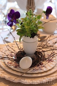Planting and displaying a plant in an eggshell...love the whole egg cup idea since they come in so many ways! As the plant started to grow you could just plant it in a larger container shell and all since it's biodegradable :D