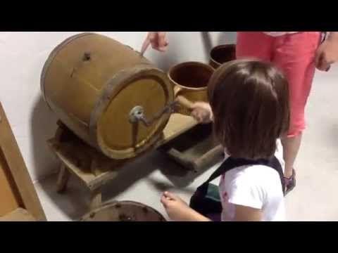 Bádání v borském zámku a muzeu - YouTube