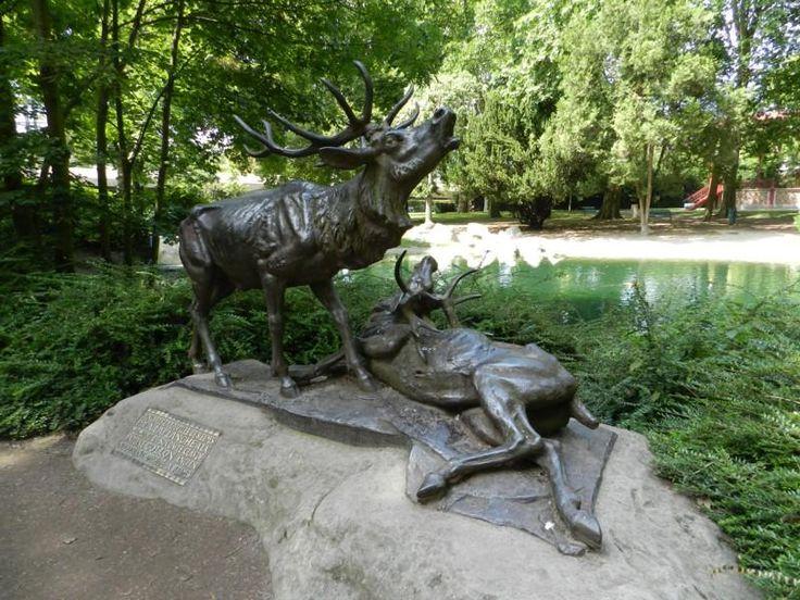 Combat de cerfs – Jardins de la Patte d'Oie – Reims. Champagne-Ardenne