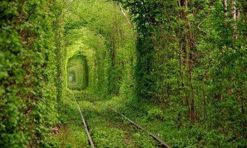 ウクライナの首都キエフから約350km離れたクレベンという小さな町にあるトンネル。 地元では、「愛のトンネル」として知られる木々の緑に囲まれた幻想的なトンネルです。