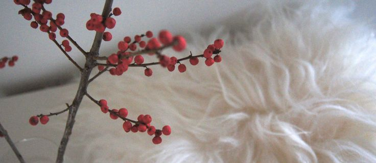#godjul #hvidtskind #julehygge #skind #socialøkonomi #bolig #interiør #økologiskskind