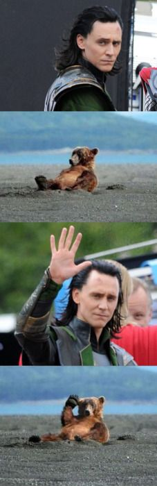 This is just so dumb, but I laughed like a loon. Loki