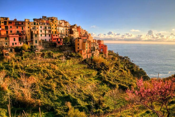 #Manarola - Cinque Terre, Italy http://wlochy.praktycznyprzewodnik.eu/regiony-wloch/liguria/manarola/