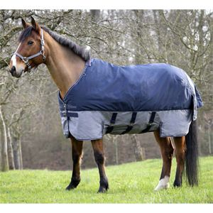 Equi-Theme Tyrex 600D Belly Belt Lightweight Turnout Rug