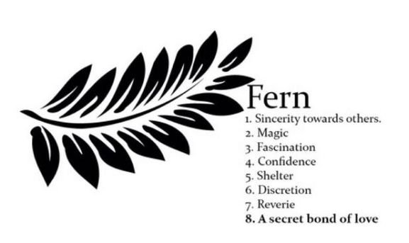 Harry Styles New Fern Tattoo: What Does It Mean? | Cambio