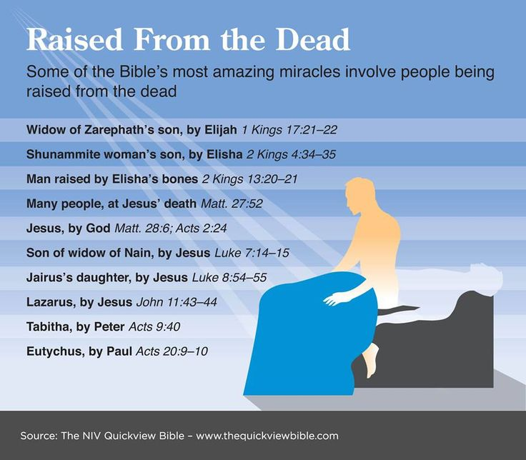 Raised from the Dead in the Bible