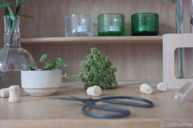 Share your plant shelfies! #ujb #green http://thuisopnummer14.blogspot.nl/2015/11/theres-always-time-for-green-shelfie.html