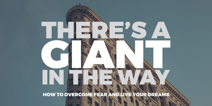 Overcome your giant, your fear, one small rock at a time. Take just one step towards the goal each day - Discover how to Overcome Fear and Live Your Dreams