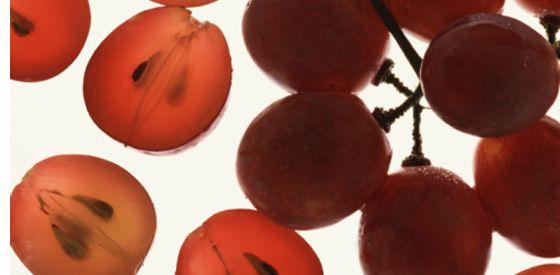 A szőlőmagról