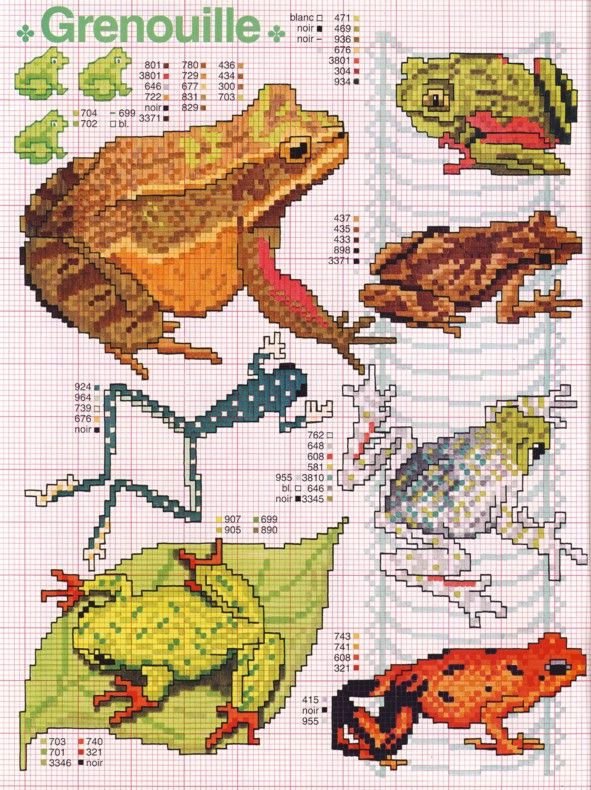 konnad: Needlework Frogs, Green Frogs, Animal X Stitching, Frog Projects, X Stitch Frogs, Frogs Cs Pb Coloring, Frogs Fish