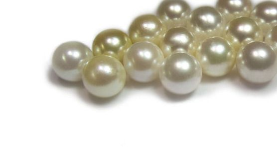 Great Southern Pearls is now on Tumblr!