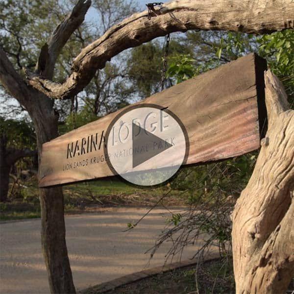 Best 25 Garden Steps Ideas On Pinterest: Best 25+ Wooden Walkways Ideas On Pinterest