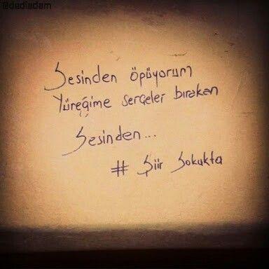 sahi neydi aşk sevdam ? ben sana şiir yazayım sen türkü diye söyle