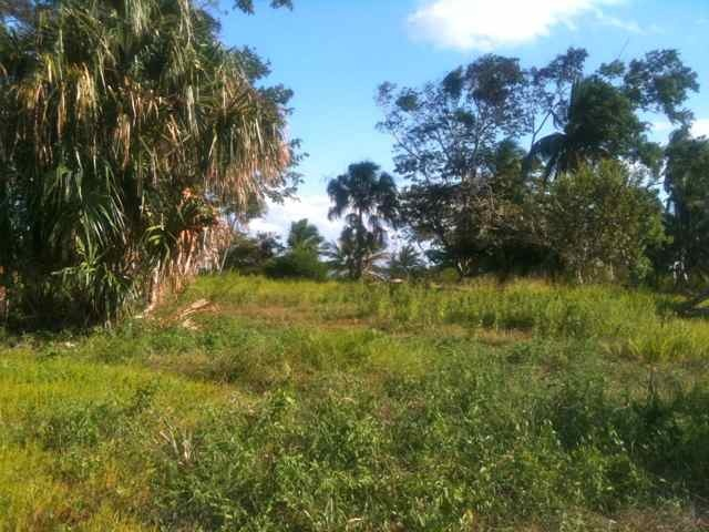 For Sale: Heaven's Point is a 73-acre high land Peninsula that is well-drained, partly cleared, and easily accessed with trails. It has 6,800 feet of sea coast on Corozal Bay which...see more. $2,500,000 US. Corozal District, Belize
