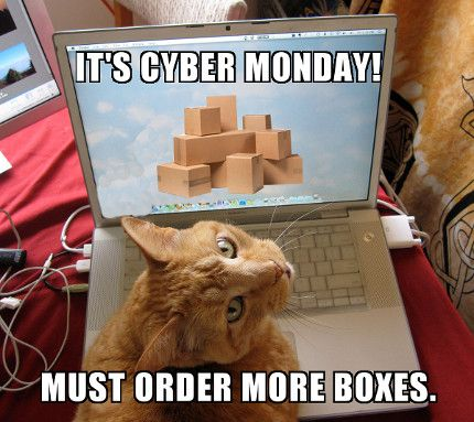 What cats order on Cyber Monday.