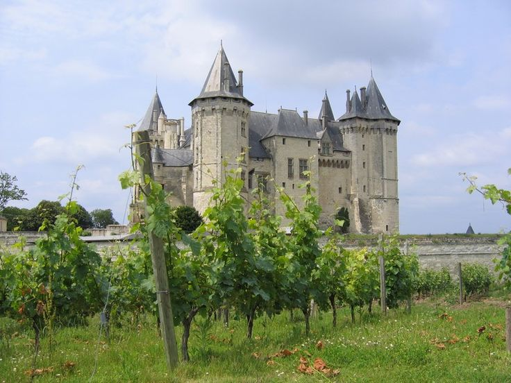 poilly loire - Google Search