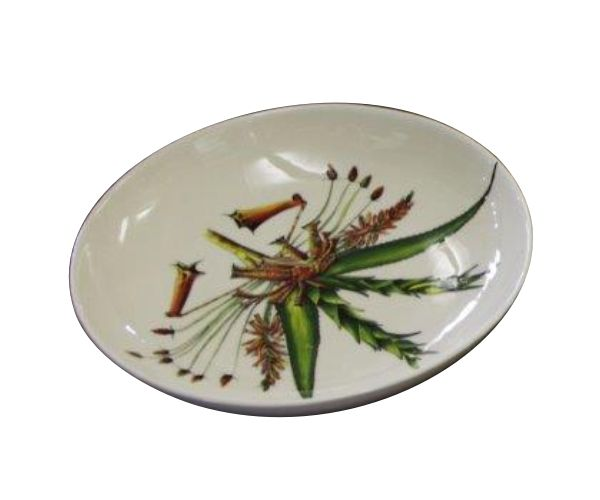 Aloe Bush Bowl - hand painted, colourful & functional. #painted #art #ceramic #kitchen