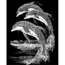 Reeves Scraperfoil - Silver - Dolphins
