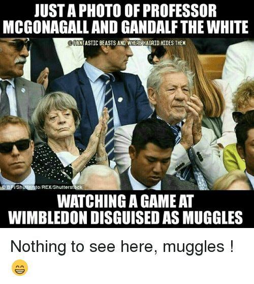 Muggles
