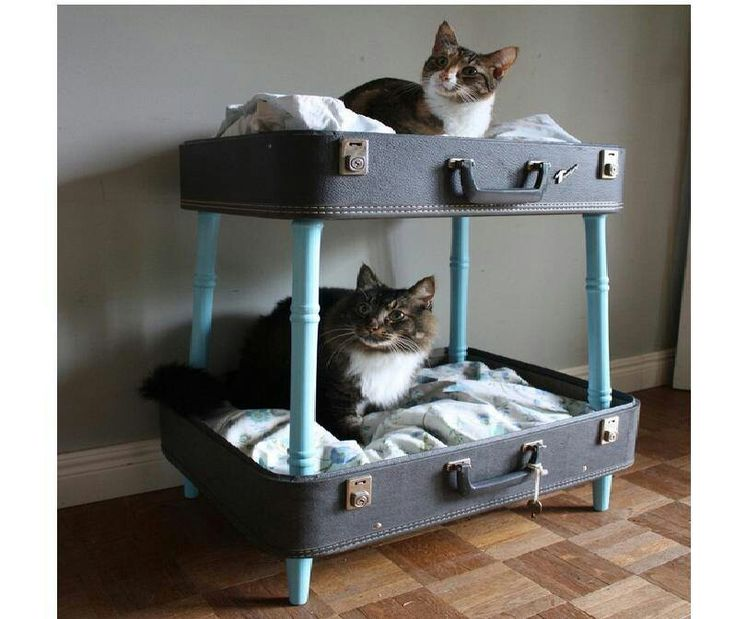 Vintage suitcase repurposed into pet cat bunk beds add for Recycle and redesign ideas