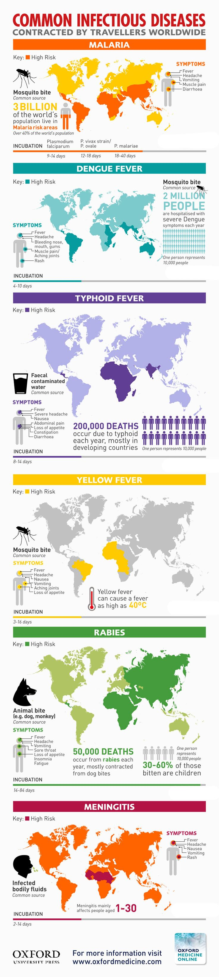 Common Infectious Diseases Contracted by Travellers Worldwide #infographic