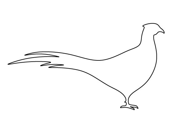 Best Bird Templates Images On   Bird Birds And Mini
