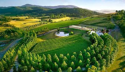 Melbourne City Life: Welcome to Yarra Valley: You'll never want to leave!
