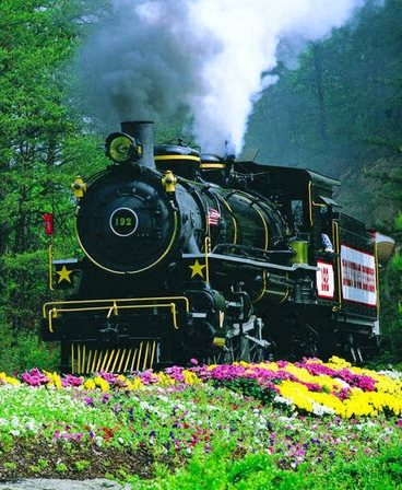 Train to Dollywood, TN                                                                                                                                                      More