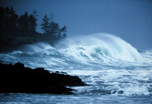 Storm watching in Tofino while staying at The Wickaninnish Inn