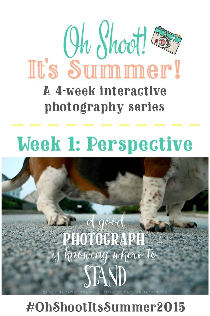 You don't need fancy equipment to capture life's everyday moments! Learn how to use perspective to take your everyday photos to the next level - plus earn FREE 8x10 prints & a chance for a $50 Shutterfly gift card!  Oh Shoot! It's Summer! 4-week summer photo series on Sweet Tea & Saving Grace!