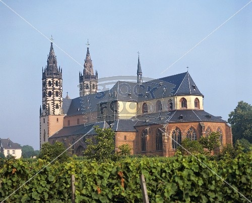 Liebfrauenkirche in Worms, Germany.  The grapes that are grown on the grounds of the church are made into Blue Nun wine (facts to be verified...).  I remember the church, not for the wine, because my favorite pizza parlor EVER was next door!  Raphael, thanks for such great pizza and such a grand view while eating it!