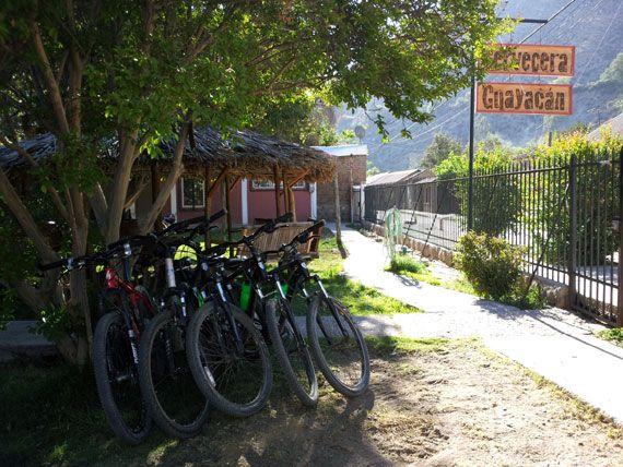 Cervecera Guayacán, Valle del Elqui - Primera Cerveza Artesanal del Valle del Elqui. Su fabrica esta ubicada en ... - http://turistips.com/cervecera-guayacan-valle-del-elqui/