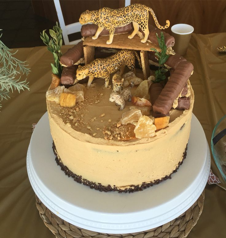 Cheetah birthday cake                                                       …