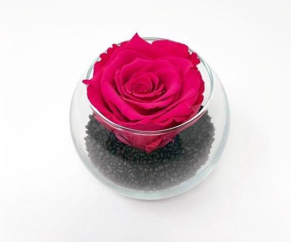 Livraison rose éternelle fuchsia dans vase boule verre Caprice de Fleurs