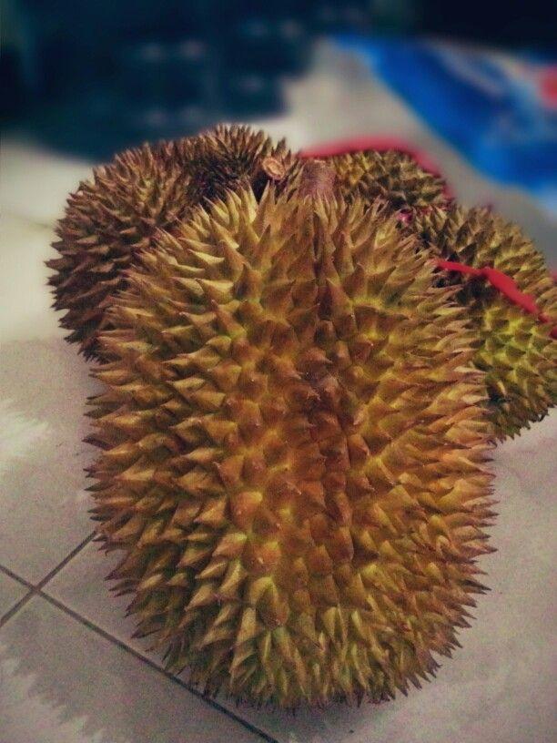 durian... king of fruit