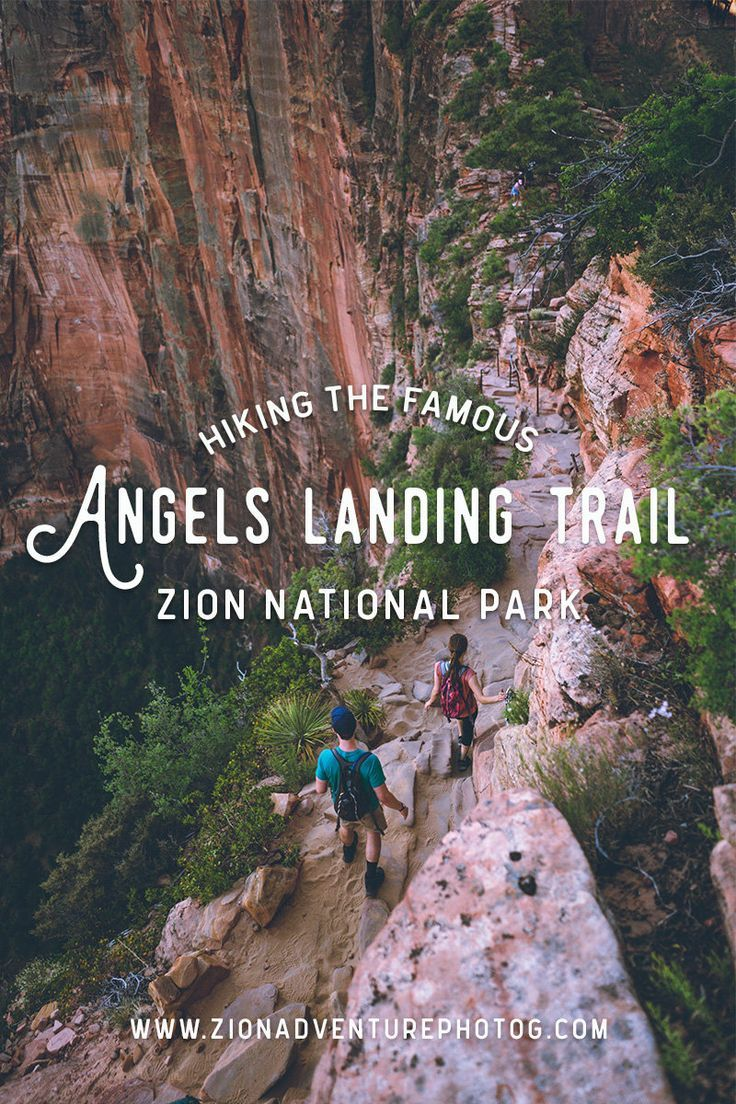 Hiking Angels Landing – Zion National Park | Zion …