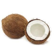 cocosnoot - Google zoeken