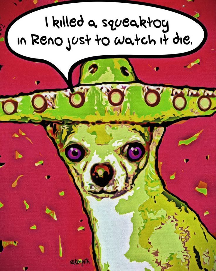 Funny Chihuahua Print - I Killed a Squeaktoy in Reno 8x10 - Korpita. A Chihuahua in a Mexican sombrero who killed a squeaktoy in Reno just to watch it die looks at you with haunted eyes in this fun Glicee Print on archival matte paper by Rebecca Korpita. Image measures 8 x 10 inches and will come with a 1/2 inch white border for ease of matting and framing.