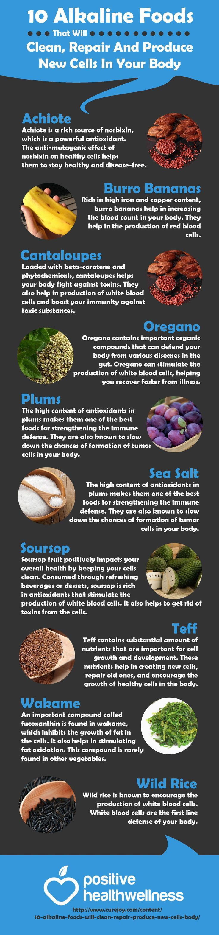 10 Alkaline Foods that Will Clean, Repair and Produce New Cells In Your Body – Positive Health Wellness Infographic