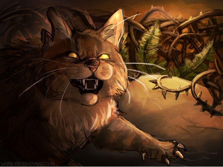 warrior cats meet erin hunter