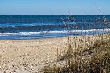 Sandbridge Beach in Virginia Beach, Virginia with beach grass and an ocean background.