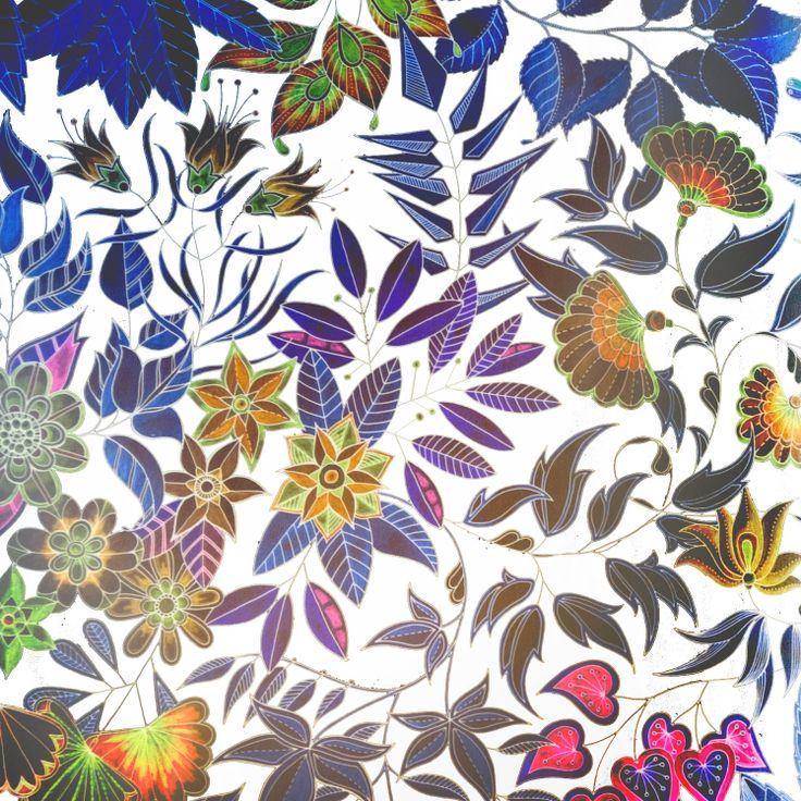 1000 Images About Secret Garden Johanna Basford On