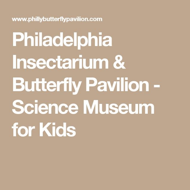 Philadelphia Insectarium & Butterfly Pavilion - Science Museum for Kids