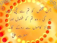10 Best Urdu/Hindi Quotes about Love-Quotes about Mohabbat in Roman Urdu