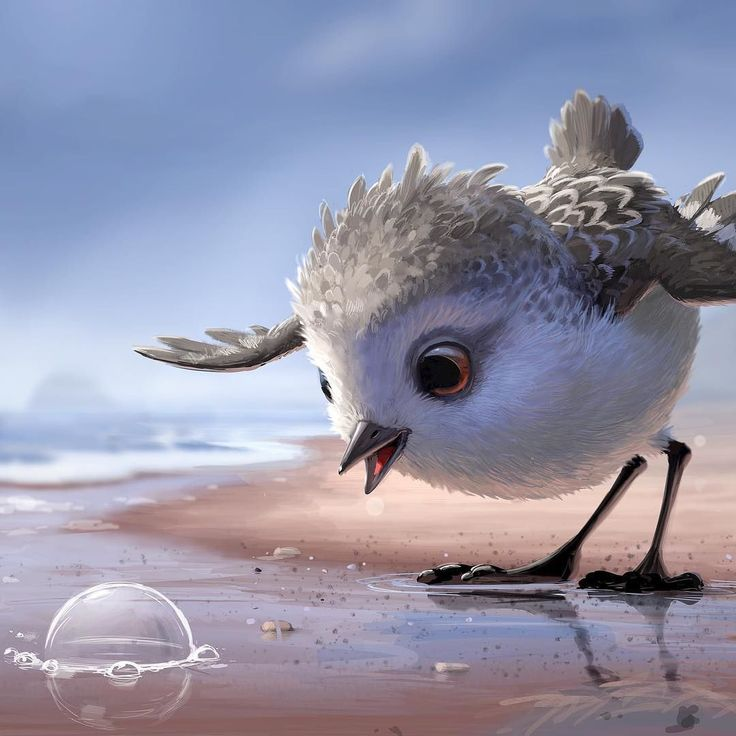 Have you see Pixar's Piper? Absolutely amazing animation work #animation #pixar #piper