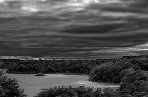Photograph - Cootes Paradise by Urbanmoon Photography