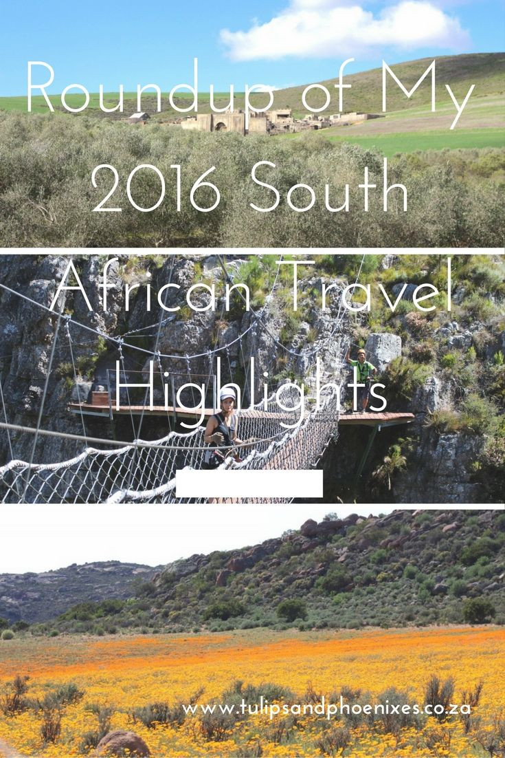 From flower season in the Northern Cape, to zip lining through the Hottentots Holland Mountains and a spur of the moment road trip through the Durbanville Wine Valley. These are my 2016 South African travel highlights. Click to read more about them!