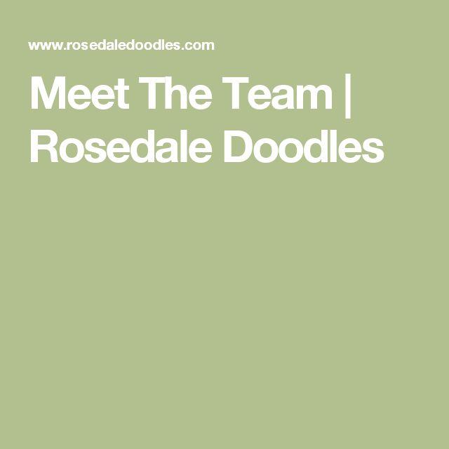 Meet The Team | Rosedale Doodles