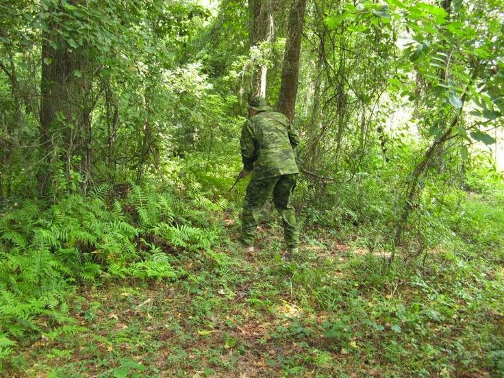 Multicam Tropic Military Camouflage Effectiveness