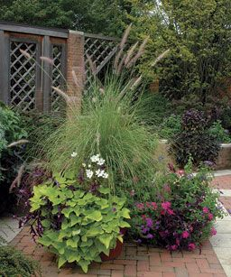 focal point containers - allow one to dominate #garden #container #green #outdoor #plant #flower #designOutdoor Plants, Flower Design, Green Outdoor, Beautiful Sweets, Hardcopi Magazines, Focal Point, Pools Gardens, Fine Gardens, Nature Colors